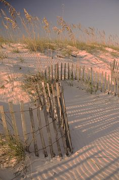 Dunes, Orange Beach, Alabama