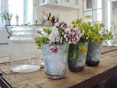 Flowers in old pails... rustic