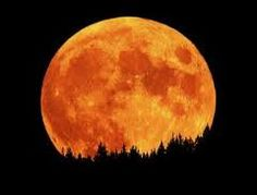 Tomorrow night at 11:35 p.m., the moon will be the closest to Earth in its orbit...STOP AND LOOK AT IT!!