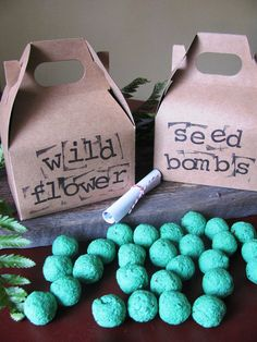 Bombs Seed bomb gifts for Earth Day-B. Lovely EventsSeed bomb gifts for Earth Day-B. Earth Day Projects, Earth Day Crafts, Nature Crafts, Plotter Silhouette Cameo, Earth Day Activities, Science Activities, Seed Bombs, In Natura, Wildflower Seeds