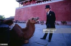 Irish actor Peter O'Toole wearing a top hat and smiling at a camel on the film set of The Last Emperor Behind him the Forbidden City Imperial Palace. Kate O Toole, John Lone, Last Emperor, Peter O'toole, Period Movies, Imperial Palace, Movie Photo, Actor Peter, Beijing