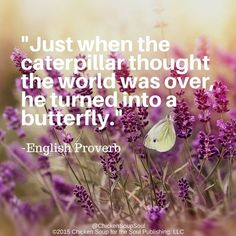 """Just when the caterpillar thought the world was over, he turned into a butterfly."" ~English Proverb"
