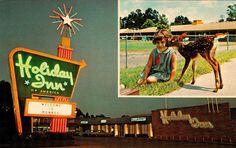 David Cobb Craig: A Salute to the Holiday Inn Sign