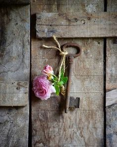 This Ivy House: Archive Beautiful Flowers, Beautiful Pictures, Old Keys, Aesthetic Drawing, Flower Quotes, Rose Cottage, Aesthetic Vintage, Belle Photo, Aesthetic Wallpapers