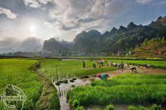 Scenic landscape of Dong Van Valley http://viaggivietnam.asiatica.com/