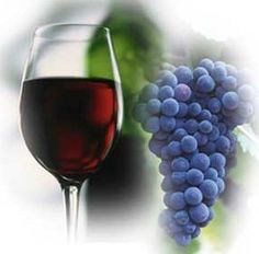 More confirmation that a daily glass of wine (or beer, or spirits) is good for your heart health and brain health. The Journal of the American Heart Association reported on alcohol use patterns for 83,000 women from 1976 to 2006, as part of the Nurses Health Study. The bottom line from the study... #brain #health #fitness