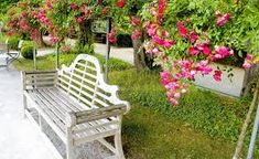 Image result for beautiful park bench