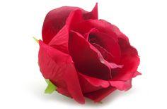 Ewa&Ja, główka róży w kolorze bordowym, 8cm