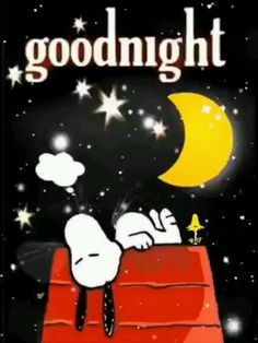 Goodnight - Informationen zu Goodnight Pin Sie k. Cute Good Night, Good Night Gif, Good Night Sweet Dreams, Funny Good Night Pictures, Funny Good Night Quotes, Good Night Greetings, Good Night Messages, Good Night Wishes, Snoopy Happy Dance