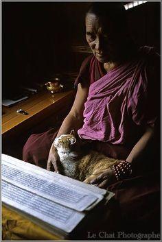 Tibetan monk with his friend, reading scripture.
