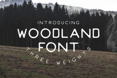 Woodland Font - Handmade by Will Paterson Design Co. on Creative Market