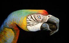 Amazing Hand Painting Art by Guido Daniele | Bored Panda