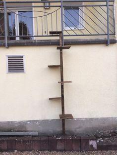 Selbstgebaute Wendeltreppe für die Miez. Aus Fichtenholz. Bretter im 40cm Abstand mit Winkeln montiert.