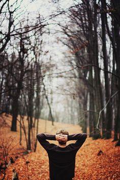thetallestpine:  brutalgeneration:  (by Perhaluk Roma)  My favorite photo on Tumblr every Autumn.