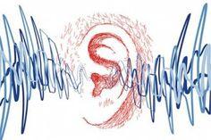 Referencia The Journal of Neuroscience, 11 de diciembre, 2013 • 33(50):19647–19656     Contacto (inglés):  Kara Gavin  Teléfono: (734) 764-2220