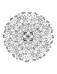 What more beautiful than a Mandalas made of leaves, flowers, branches and roots ...  You will have a wonderful moments by coloring these high quality drawings, made by artists who applied to achieve a perfect result ... not counting the time.  It's your turn to complete their work, with your colors inspired by nature, or totally original. With coloring, freedom is total !