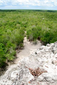 The view from the top - Nohoch Mul in Coba, Mexico