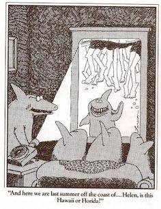 The Far Side Gallery (par Gary Larson)You can find Gary larson and more on our website.The Far Side Gallery (par Gary Larson) The Far Side Gallery, Far Side Cartoons, Far Side Comics, Funny Cartoons, Gary Larson Cartoons, Haha Funny, Funny Cute, Funny Shit, Funny Stuff
