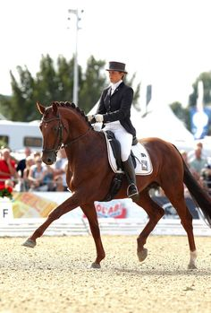 What Is Impulsion?: The Four Components that Comprise Impulsion