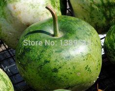 10/saco Cabaça, salpicado de Maçã raros sementes de hortaliças Sementes de Abóbora-Excelente para Projetos do Divertimento pode comer(China (Mainland))