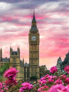 'London Big Ben Pink' Framed Print by balazsromsics Pink Framed Art, Framed Art Prints, Pink Art, London Pictures, London Photos, London Tours, London Travel, Highgate Cemetery, Dream City