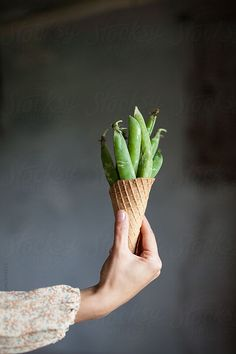 Young woman holding fresh peas in ice-cream cone, by Alberto Bogo Available to license at Stocksy.com