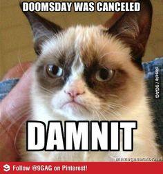 Grumpy cat on doomsday