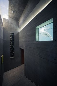 Image 45 of 66 from gallery of Atalaya House / Alberto Kalach. Photograph by Yoshihiro Koitani Casas California, California Homes, Piscina Interior, Concrete Building, Concrete Houses, Entry Hall, Beautiful Buildings, Interior Architecture, Interior Design