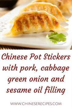Filled with yummy surprises and wrapped in traditional won-ton wrappers, Pot Stickers are delicious treats that are even better when dipped in your favorite Chinese sauce! This recipe serves 4 to Wonton Recipes, Pork Recipes, Asian Recipes, Appetizer Recipes, Cooking Recipes, Chinese Recipes, Asian Foods, Cake Recipes, Sauces