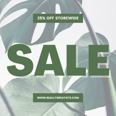 Having a sale on your website? Announce it using this Canva Sale Instagram Template! Announcement, Templates, Website, Canvas, Instagram Posts, Green, Tela, Stencils, Vorlage