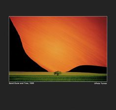Sand dune and tree by Pete Turner (1995). www.peteturner.com