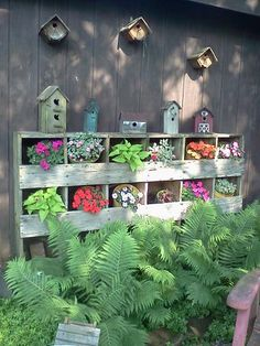 Beautiful flowers using a recycled chicken nesting box. This just may work for inside the coop. Every couple of boxes could be planted with mint between the chickens.