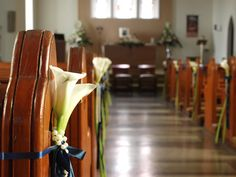 www.richardhaslam.com calla lilies, with full length stems, as pew decorations on aisle  (later arranged in vases on guest tables in hotel)