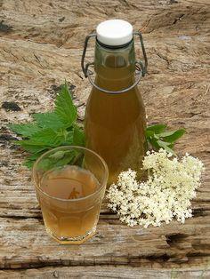 Nettle and elderflower beer with link to recipe / brandnetel en vlierbloesem bier