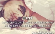 anger - when you get all cosy in your bed and then realize there is something you forgot to do