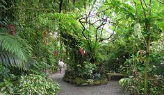"Moody Gardens, Galveston, TX, USA Az ""esőerdő piramis"" belseje"