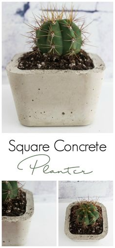A simple DIY tutorial to make concrete decor for your home! Love the modern look of this square planter! Such an inexpensive project, but it looks modern and beautiful!