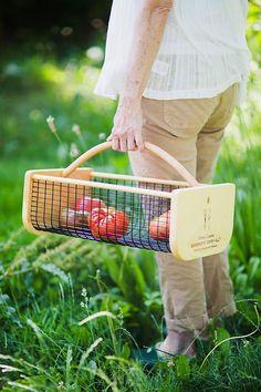 Cheap Raised Garden Beds, Gardening Courses, Cold Frame, Garden Gifts, Box Garden, Grow Your Own Food, All Gifts, Gardening For Beginners, Organic Gardening