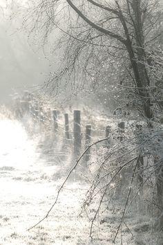 Beautiful light in winter wonderland. Landscape Photography, Nature Photography, Bridal Photography, Photography Poses, Winter Magic, Winter's Tale, Winter Scenery, Snow Scenes, Winter Beauty