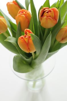 Tonjes Home - a blog about our home, style and beauty: Spring tulips. Tulipaner, tulips, rosa, pink, flowers, flower, blomst, blomster, snittblomster, beautiful, colorful, interior, interiør, fargerikt