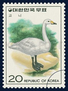 Postage Stamps of Bird Seriesswan, Bird, Green, white, 1976 11 20 , 조류 시리즈(제5집), 1976년 11월 20일, 1041, 고니, postage 우표