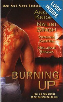 Burning Up (Berkley Sensation): Angela Knight, Nalini Singh, Virginia Kantra, Meljean Brook Four novellas.  I really liked the last story by Meljean Brook, and want to read more in her steampunk universe.