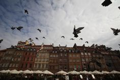 Każda z dzielnic Warszawy to osobny ogrom możliwości. Na tę wiosnę polecamy Mokotów - kryje wiele do odkrycia!  A po zwiedzaniu odpocznijcie w https://www.apartamentywpolsce.pl/noclegi-warszawa/apartamenty-w-warszawie/apartament-tww-mokotow-10-warszawa-noclegi  #apartamentymokotów #warszawa #mokotów
