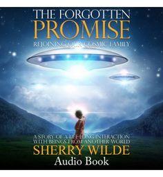 The Forgotten Promise by Sherri Wilde (Audio Book)