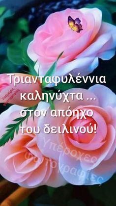 Good Night, Good Morning, Beautiful, Rose, Flowers, Quotes, Decor, Good Night Greetings, Nighty Night