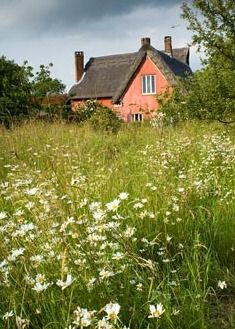 Smallwood Farmhouse in Suffolk is a lovely thatched pink cottage amongst a wildflower garden.