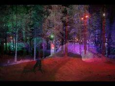 Rovaniemi, FINLAND ( Suomi feeling in my heart forever)