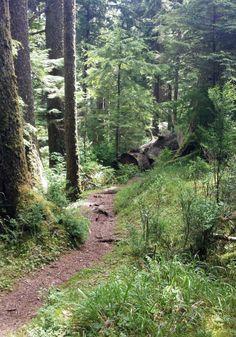 Hiking trail on the Oregon Coast!