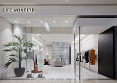 LIFEwithBIRD Store in Bondi Junction by Studio Wonder | Yellowtrace