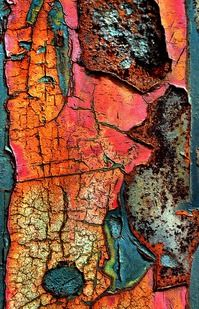 crackles / photo by Don Taylor